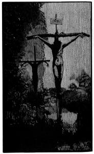 Cross- moser